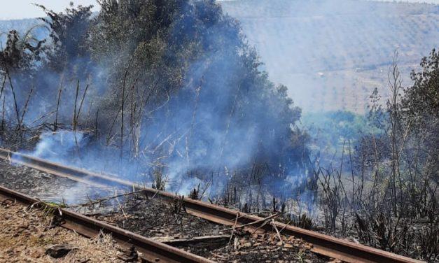 Incêndio no trilho do trem atrapalha viagem inaugural