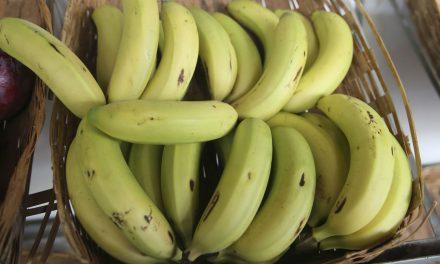 Preços da melancia, banana e maçã têm forte alta em dezembro, aponta Conab