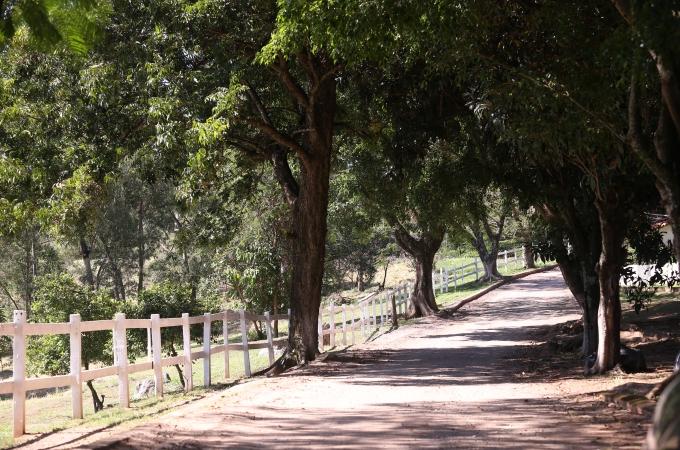 Fazenda Santo Antônio terá passeios guiados gratuitos a partir deste final de semana