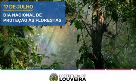 Louveira celebra o Dia Nacional de Proteção às Florestas e o Dia do Curupira neste sábado (17)