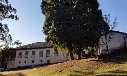 O que fazer em Louveira: feriado prolongado tem atividades para toda a família na Fazenda Santo Antônio